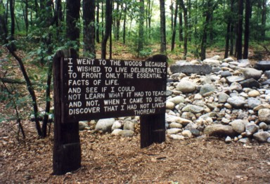 Walden Pond (Concord, MA, U.S.A.)<BR>
